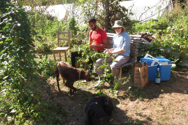 Récolte du houblon bénévoles 2019 – 2