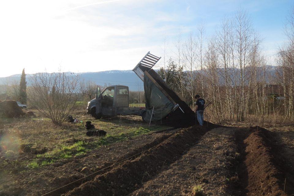 Enrichissement de la houblonnière avec du compost · Association HoublonNous, Mategnin, Meyrin, Genève